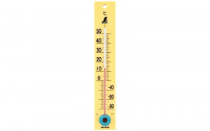 Thermometer C 2